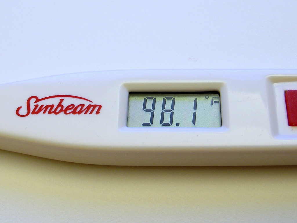 Photo: Body Temperature Reading by Heartlover1717 (Flickr)